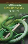 A Field Guide to the Common Snakes of Belize